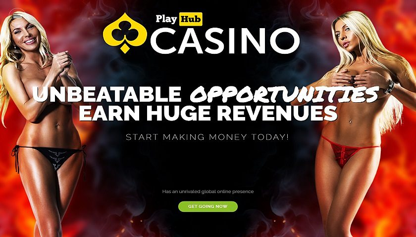 PlayHub Casino Affiliates captura de pantalla
