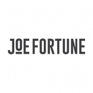 Detailed casino review of Joe Fortune casino including FAQ, ownership, company and pros & cons