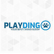 PlayDingo Casino logo