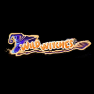 Wild Witches logo