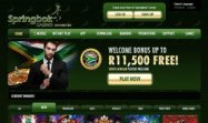 Sprinbok Casino is another great option for South African Players